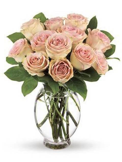mazzo di 12 rose rosa chiaro