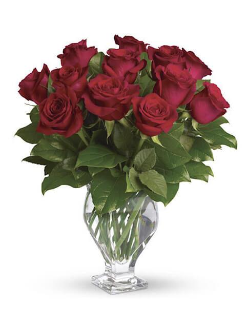 12 rose rosse