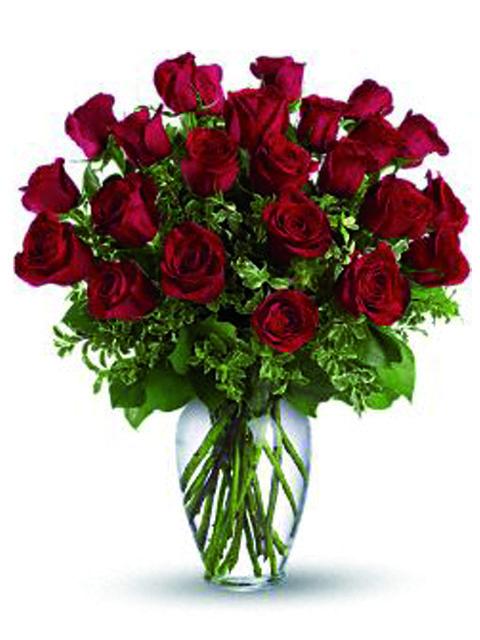 24 roselline rosse con verde