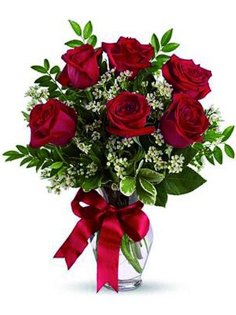 sei rose rosse