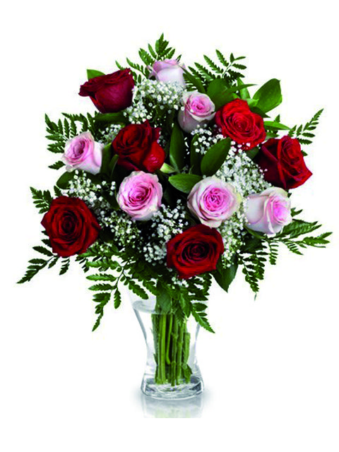 rose rosse e rose rosa