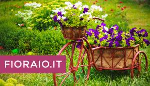 spedire a casa dei fiori acquistati online